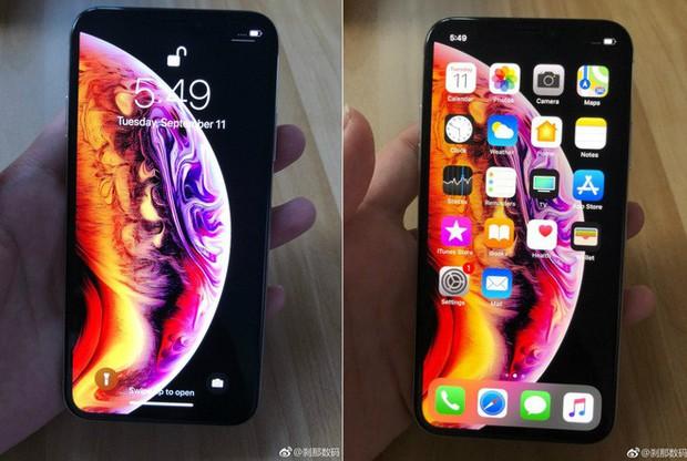 iPhone Xs lộ ảnh trên tay trước giờ G, hóa ra hình nền mới là để che tai thỏ - Ảnh 1.