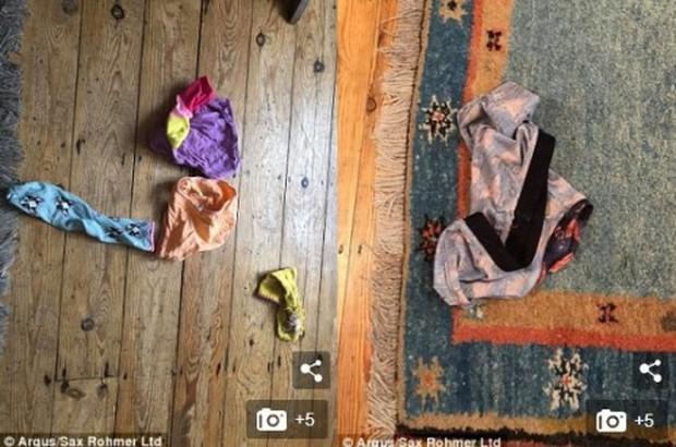 Siêu trộm mèo chuyên lấy... đồ lót từ nhà hàng xóm về tặng chủ - Ảnh 2.