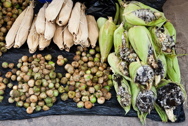 Ẩm thực lạ bốn phương: Đặc sản ngô mốc đen xì của người Mexico - Ảnh 3.