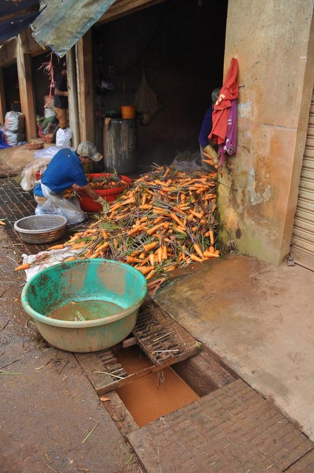 Hàng trăm hộ dân ở Đà Lạt bỏ hoang vườn tược vì nguồn nước bị ô nhiễm từ chợ nông sản - Ảnh 1.