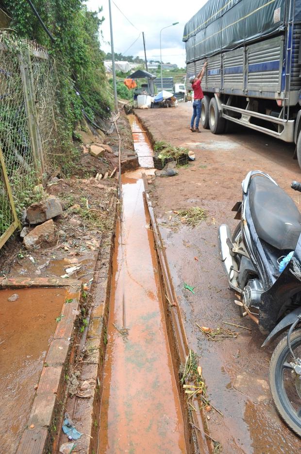 Hàng trăm hộ dân ở Đà Lạt bỏ hoang vườn tược vì nguồn nước bị ô nhiễm từ chợ nông sản - Ảnh 2.