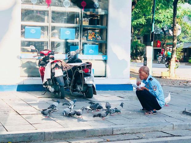 Hình ảnh chú bảo vệ cho đàn chim bồ câu ăn ở vỉa hè Hà Nội khiến nhiều người xúc động - Ảnh 1.
