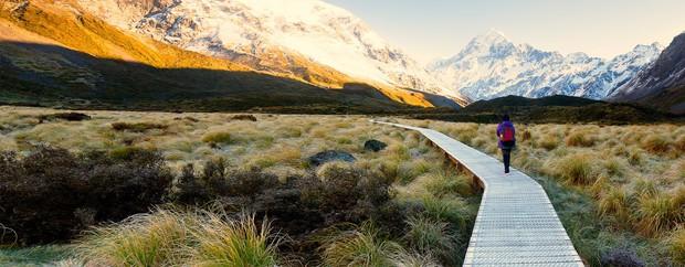 New Zealand - điểm đến du học lãng mạn và đậm chất thơ dành cho những kẻ mơ mộng - Ảnh 9.
