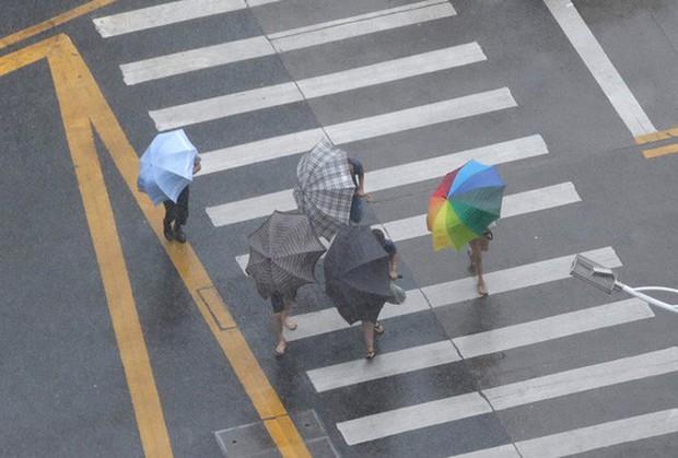 Bão Mangkhut xô nghiêng nhà cửa, người già ở Hồng Kông quyết không sơ tán - Ảnh 12.