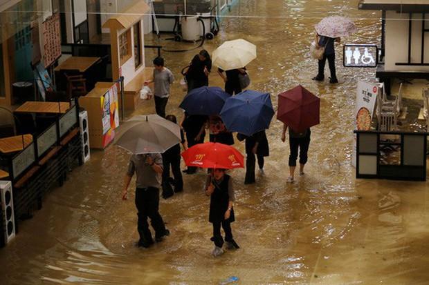 Bão Mangkhut xô nghiêng nhà cửa, người già ở Hồng Kông quyết không sơ tán - Ảnh 3.