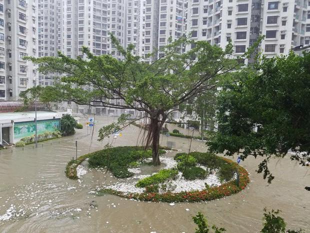 Bão Mangkhut xô nghiêng nhà cửa, người già ở Hồng Kông quyết không sơ tán - Ảnh 4.
