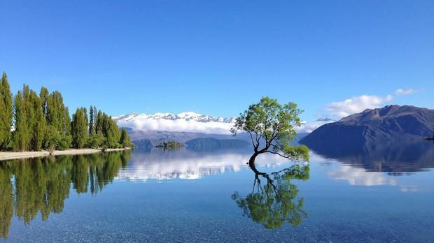 New Zealand - điểm đến du học lãng mạn và đậm chất thơ dành cho những kẻ mơ mộng - Ảnh 8.