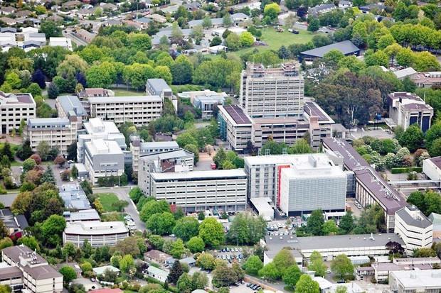 New Zealand chỉ có 8 trường đại học nhưng cả 8 đều lọt top 3% trường tốt nhất thế giới! - Ảnh 4.