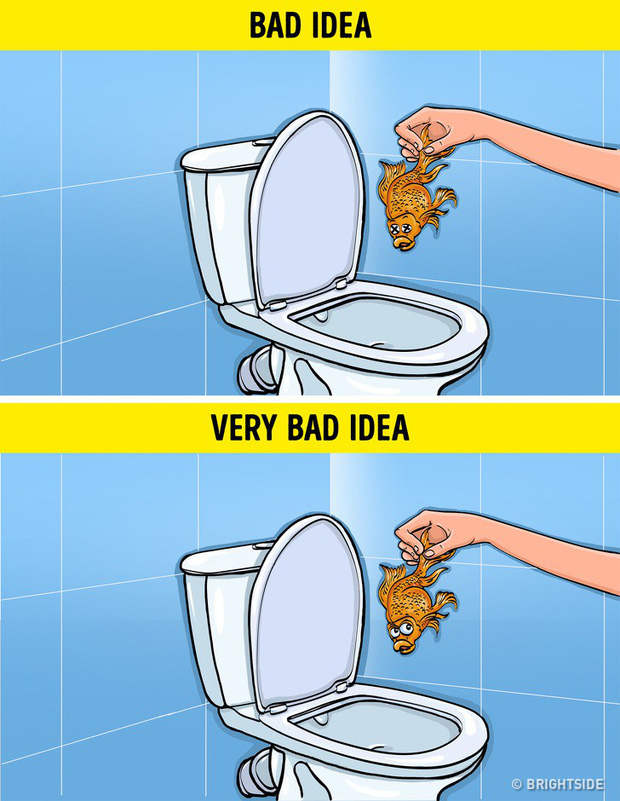 8 loại rác tuyệt đối không vứt vào bồn cầu nếu không muốn có ngày WC ngập ngụa trong nước thải - Ảnh 3.