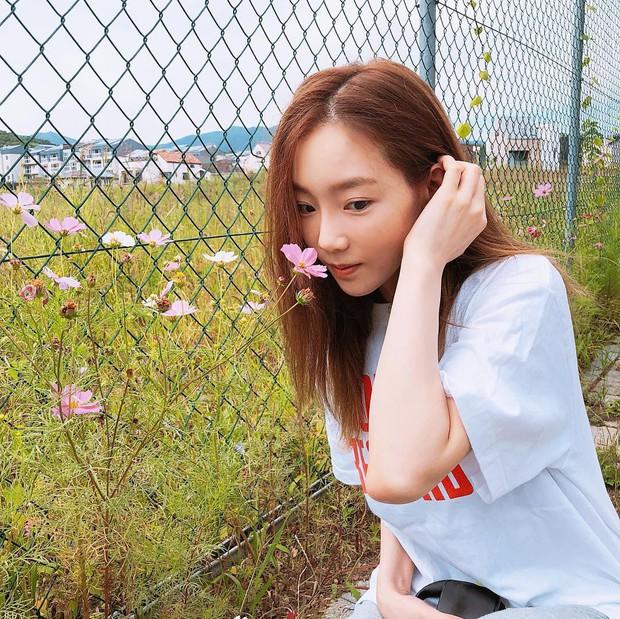 Màu tóc cơ bản đang được sao Hàn để nhiều nhất cũng chính là màu nhuộm hoàn hảo của mùa thu, nàng nào thử cũng sẽ xinh - Ảnh 3.