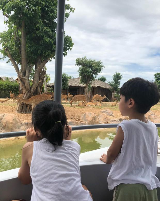 Đà Lạt, Hội An - Hai điểm đến không mới nhưng chưa bao giờ hết hot của giới trẻ Việt - Ảnh 10.