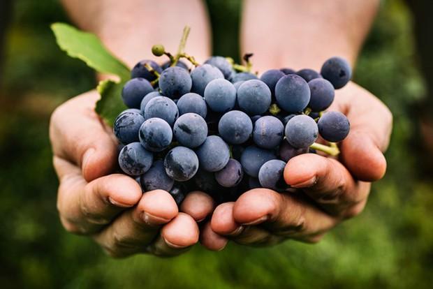 Người yếu thận nên chăm ăn những loại thực phẩm này để giúp thận luôn khỏe mạnh - Ảnh 6.