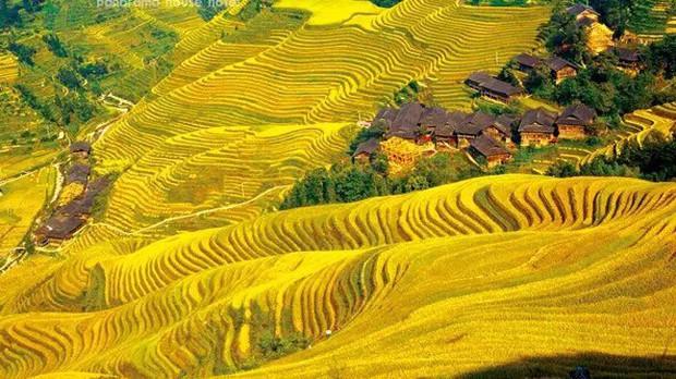 Những ngôi làng cổ cảnh sắc đẹp mê hồn nhất định phải ghé thăm vào mùa thu ở Trung Quốc - Ảnh 3.