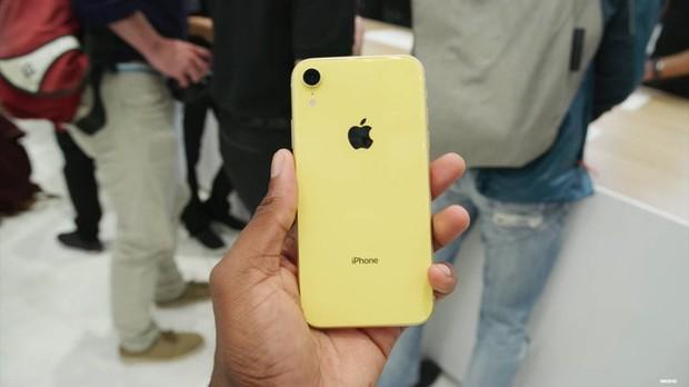 iPhone XR được dự đoán bán chạy hơn cả XS và XS Max - Ảnh 14.