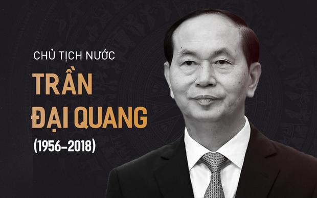 Chủ tịch nước Trần Đại Quang trở về đất mẹ - Ảnh 59.