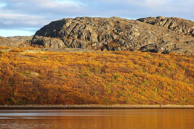 Cảnh đẹp ngọt ngào mê đắm lòng người của vùng Murmansk nước Nga - Ảnh 7.