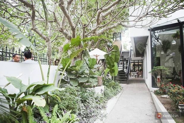 Hà Nội: 3 quán cà phê xanh mướt, mát rượi cực hợp để đi vào những ngày đầu thu - Ảnh 15.