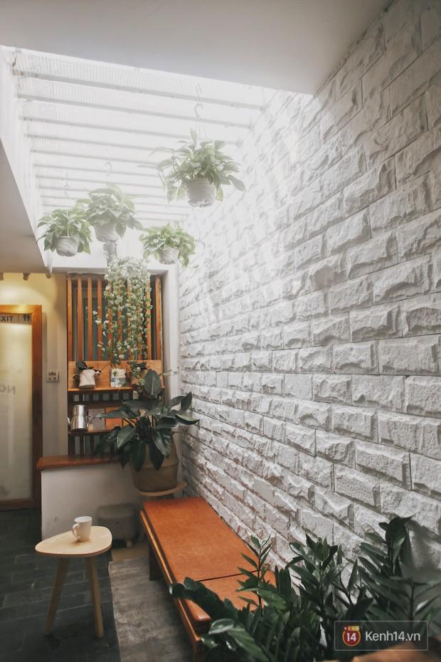 Hà Nội: 3 quán cà phê xanh mướt, mát rượi cực hợp để đi vào những ngày đầu thu - Ảnh 25.
