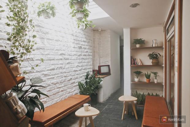 Hà Nội: 3 quán cà phê xanh mướt, mát rượi cực hợp để đi vào những ngày đầu thu - Ảnh 23.