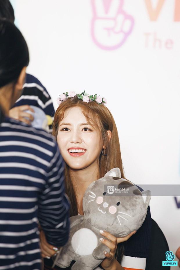 Báu vật quốc dân Seolhyun quyến rũ khó cưỡng, Hyomin rạng rỡ bên dàn chân dài AOA tại fansign ở Việt Nam - Ảnh 10.