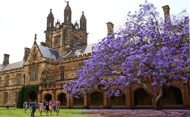 Điểm mặt 12 trường Đại học tốt nhất nước Úc mà bất cứ ai muốn học Thạc sĩ khoa học tự nhiên đều cần phải biết - Ảnh 5.