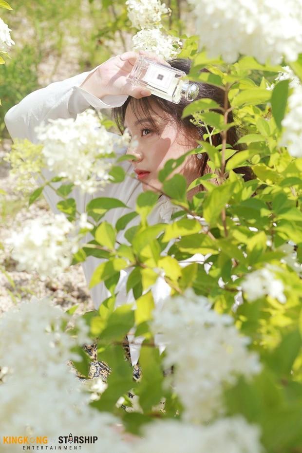 Náo loạn trước bộ ảnh hậu trường của mỹ nhân Hậu duệ mặt trời Kim Ji Won: Khi nhan sắc vượt cả chuẩn nữ thần - Ảnh 4.