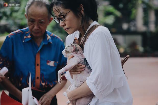 Gặp người đàn ông xây resort chó mèo kỳ lạ nhất Hà Nội: Tổ chức đám tang và thờ cúng cho hàng trăm mộ phần thú cưng xấu số - Ảnh 8.