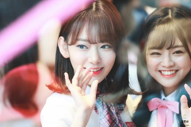 Nhóm nữ tân binh chiến thắng Produce 48: Một rừng mỹ nhân Hàn-Nhật là niềm hi vọng của nhan sắc Kpop thế hệ mới - Ảnh 8.