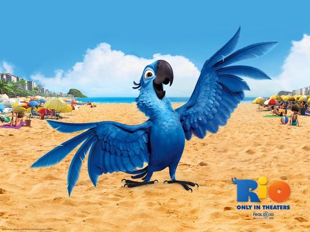 Tin sốc: Vẹt Rio của Brazil sẽ tuyệt chủng trong vòng 2 năm kế tiếp - Ảnh 1.