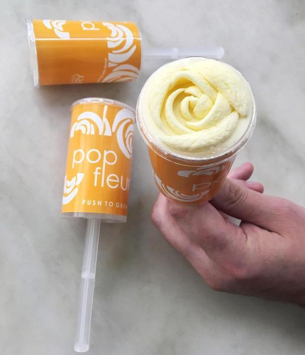 Cứ tưởng bông hoa, hóa ra đây lại là một que yogurt đang tạo nên trào lưu ở Mỹ - Ảnh 2.