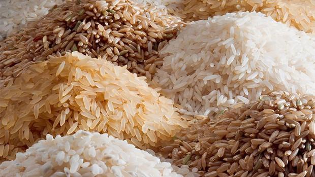 Từ việc giáo viên Trung Quốc bị chỉ trích vì bắt học sinh đếm 100 triệu hạt gạo: Người lớn áp đặt tư tưởng của mình vào con trẻ để làm gì? - Ảnh 1.