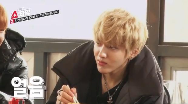 EXO thay đổi thế nào sau 5 năm tham gia show thực tế đầu tiên? - Ảnh 25.
