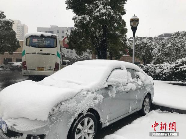 Cảnh tượng lạnh đầy khắc nghiệt tại Trung Quốc: Chị em phụ nữ quấn chăn, bịt kín lái xe máy đi làm - Ảnh 20.