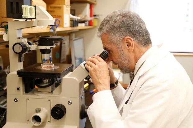 Sự thật về bức ảnh chú chuột có đôi tai người trên cơ thể và thí nghiệm khoa học gây nhiều tranh cãi - Ảnh 2.
