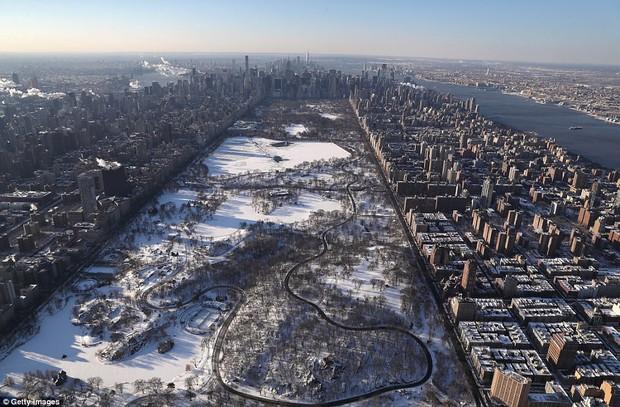 Sau trận bão tuyết kinh hoàng, thành phố New York hoang tàn, ảm đạm như trong phim Ngày Tận Thế - Ảnh 5.