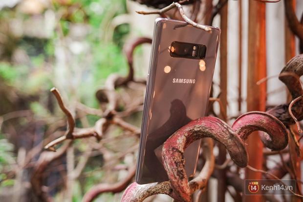 Top 5 smartphone màu sắc hiếm có khó tìm dành cho chị em diện Tết - Ảnh 2.