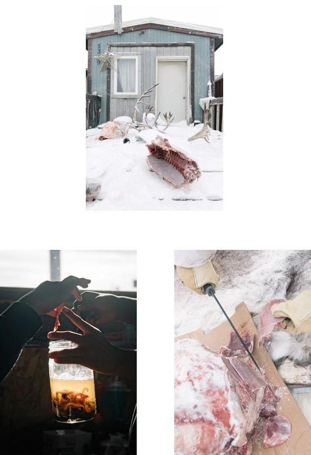 Cuộc sống thử thách lòng gan dạ của thợ săn vùng Bắc Cực: Sẵn sàng đương đầu với bão tuyết và cơn thịnh nộ của cá voi - Ảnh 3.