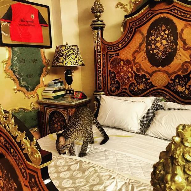 Chân dung hoàng tử nổi tiếng Brunei: Đẹp trai sáng láng, cuộc sống xa hoa ngút trời lại có tới 747 nghìn follower Instagram - Ảnh 4.