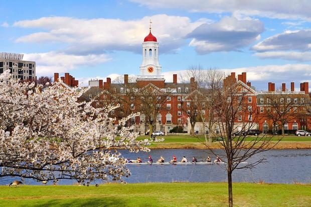 Không phải Harvard, đây mới là trường đại học tốt nhất thế giới 2018 - Ảnh 11.