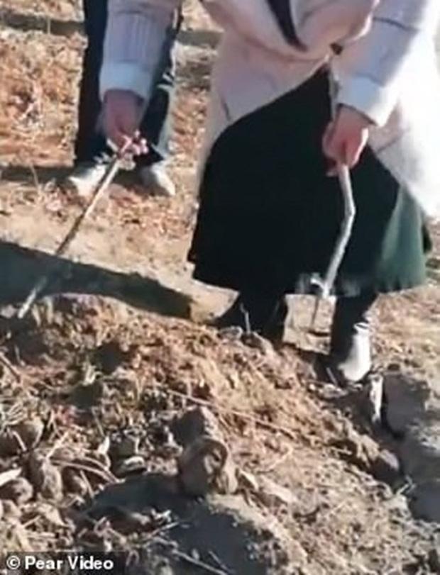 Trung Quốc: Cha mẹ gào khóc trước mộ con gái bị trộm xác làm cô dâu ma - Ảnh 1.