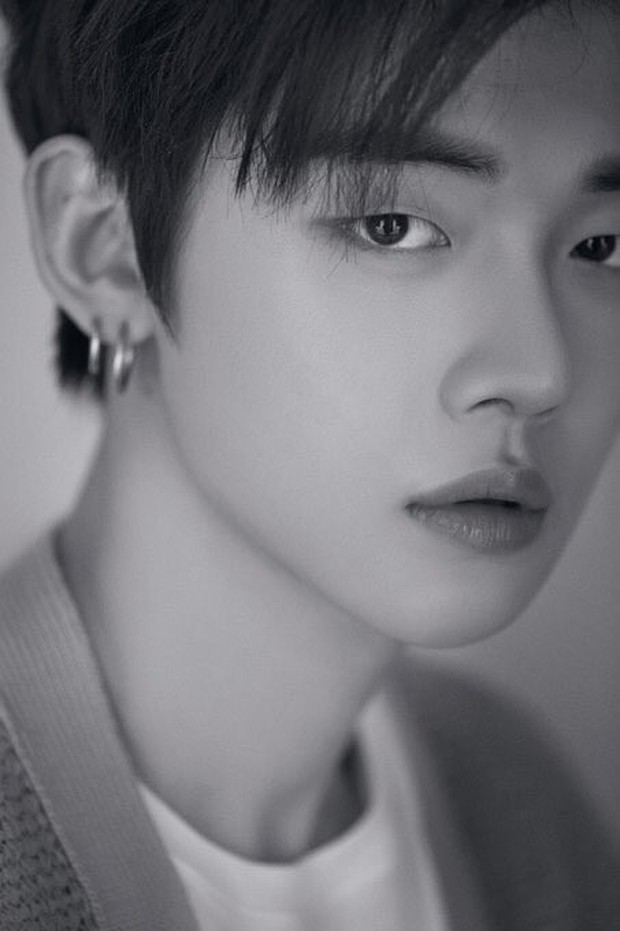 """Thành viên đầu tiên của """"em trai BTS"""" vừa lộ diện đã lọt ngay top trend toàn thế giới! - Ảnh 2."""