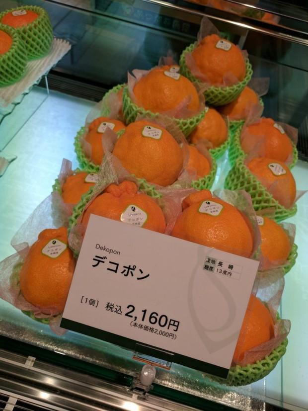 Giờ đến trái cây cũng làm hàng hiệu, một quả xoài có giá hơn 6 triệu và có một nơi bán toàn hàng hiệu như vậy  - Ảnh 5.
