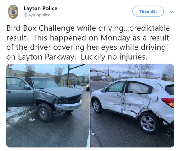 Sở cảnh sát Mỹ ra khuyến cáo người dân không được bịt mắt như trong Bird Box sau tai nạn giao thông - Ảnh 1.