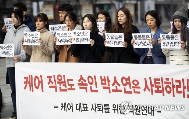 Tổ chức bảo vệ động vật hàng đầu Hàn Quốc bị tố giết hại hàng trăm con chó để kiếm thêm tiền quyên góp - Ảnh 4.