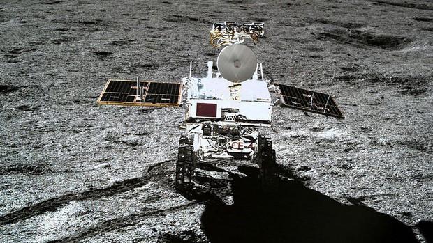 Chúng ta có một tin cực buồn về mầm cây đầu tiên mọc trên Mặt trăng của Trung Quốc - Ảnh 3.