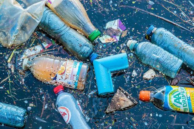 Học hỏi 8 cách tái sử dụng chai nhựa siêu sáng tạo của người Nhật, cách cuối hơi lạ đời nhưng vẫn có tác dụng - Ảnh 1.