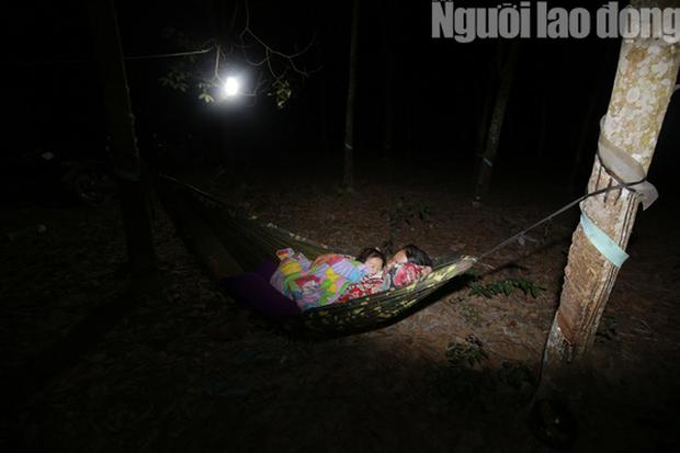 Cha mẹ chết dưới bánh xe container, con cái ra rừng, ra rẫy ngủ - Ảnh 5.