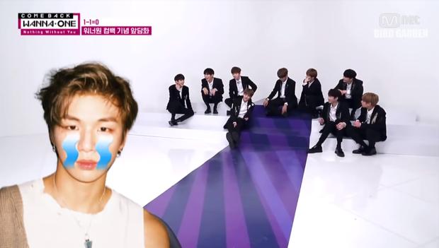 Wanna One tan rã rồi, fan sẽ không được thấy 11 thành viên bóc phốt nhau thế này nữa! - Ảnh 8.