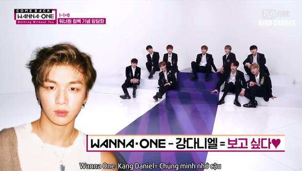 Wanna One tan rã rồi, fan sẽ không được thấy 11 thành viên bóc phốt nhau thế này nữa! - Ảnh 9.