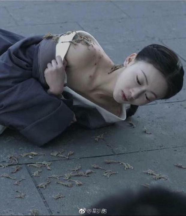 Bị mỉa mai diễn xuất, Hạo Lan Truyện tung hình ảnh Ngô Cẩn Ngôn đang hiến dâng cho... bọ cạp? - Ảnh 2.